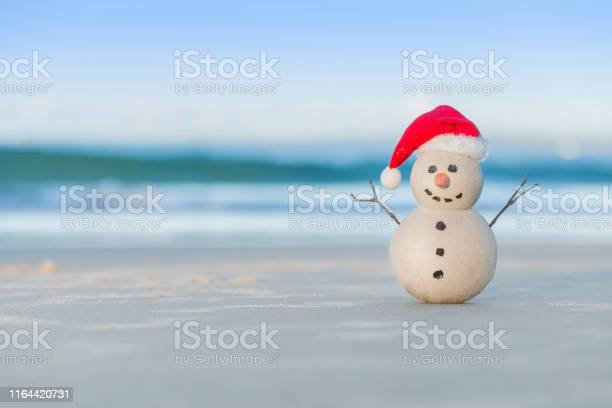 Photo of Australian Christmas Sandman on a beautiful white sand beach at sunset
