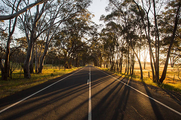 Australian Country Road at Sunset stock photo