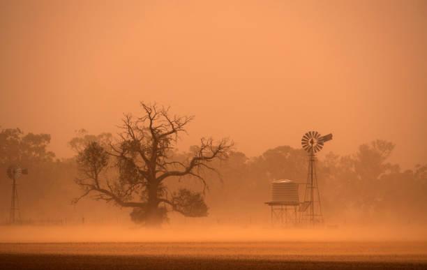 batı yeni güney galler'de avustralya kuraklık toz fırtınası - kuraklık stok fotoğraflar ve resimler