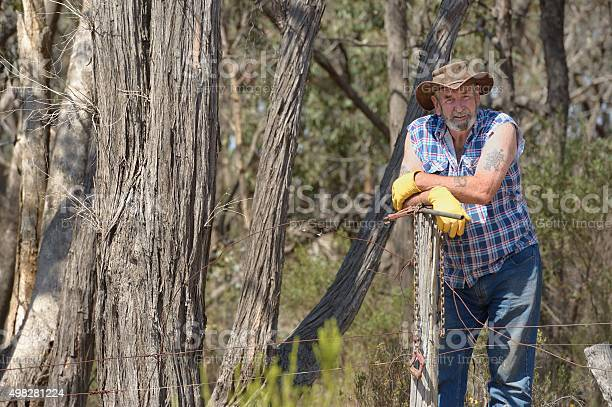 Australian Farmer Fencing Fencing on a rural property in Victoria.  2015 Stock Photo
