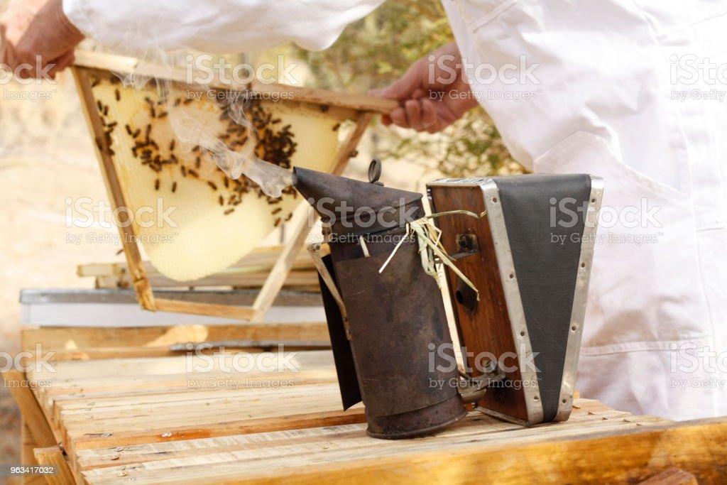 Fermier australien qui tend ses ruches avec son fumoir antique vintage dans sa ferme privée avec abeille Maison boîtes en Australie rurale - Photo de Abeille libre de droits