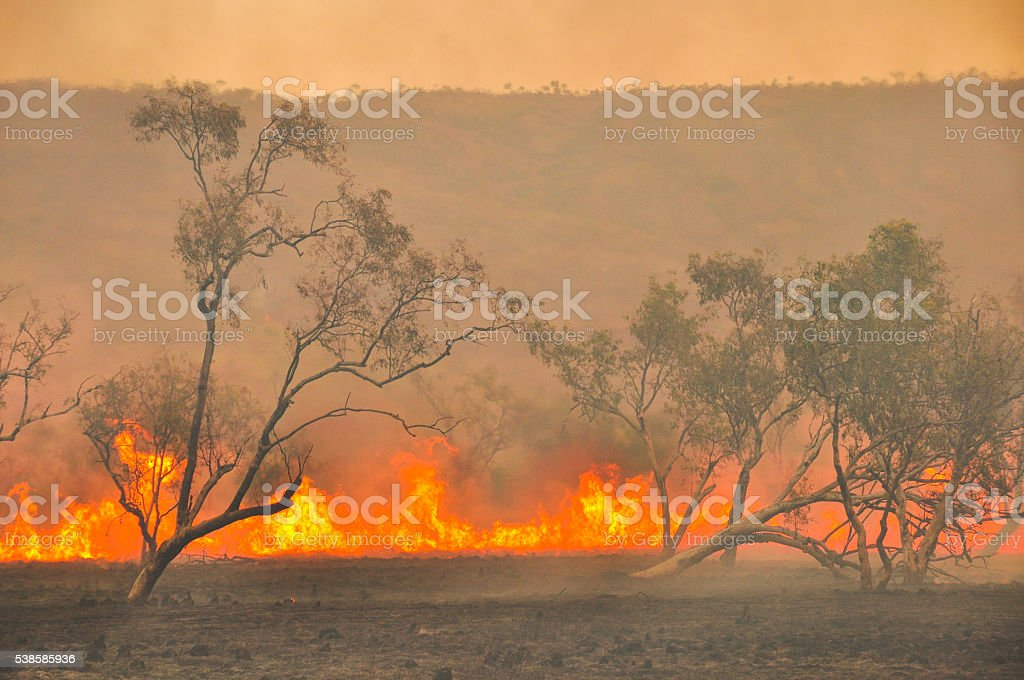 Australian fires stock photo