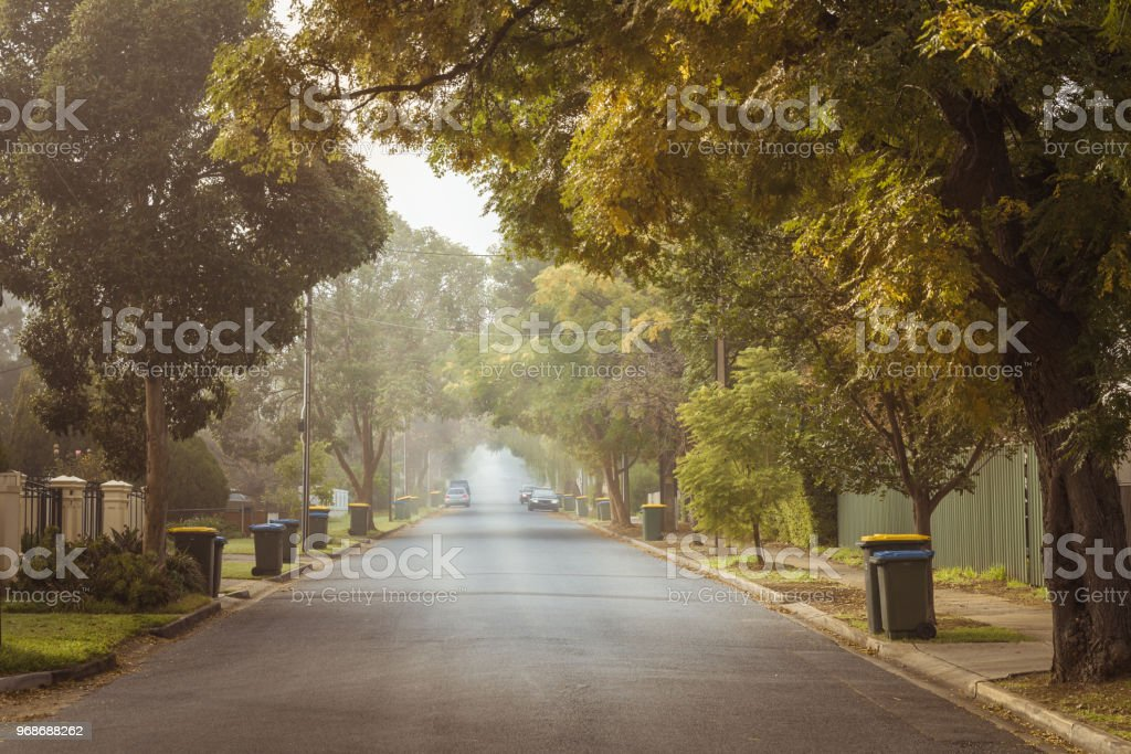 Australian foggy autumn morning in Adelaide suburbs with rubbish recycling on kerb stock photo