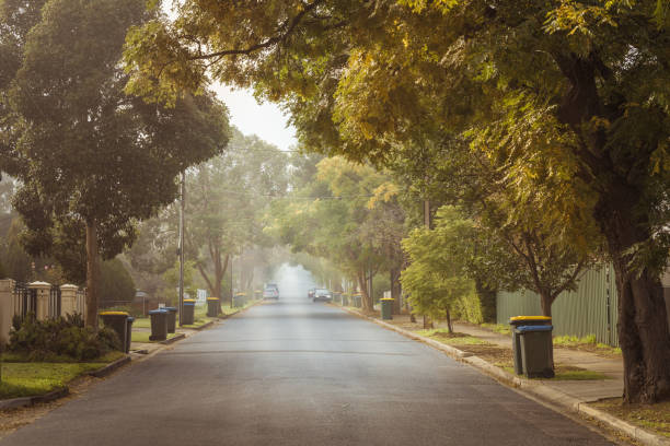 australian foggy autumn morning in adelaide suburbs with rubbish recycling on kerb - street stock pictures, royalty-free photos & images