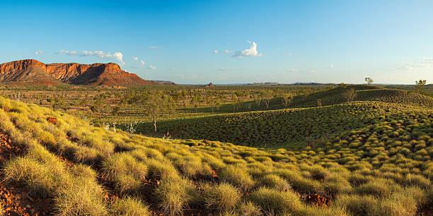 Australian landscape in Purnululu National Park, Western Australia at sunset stock photo