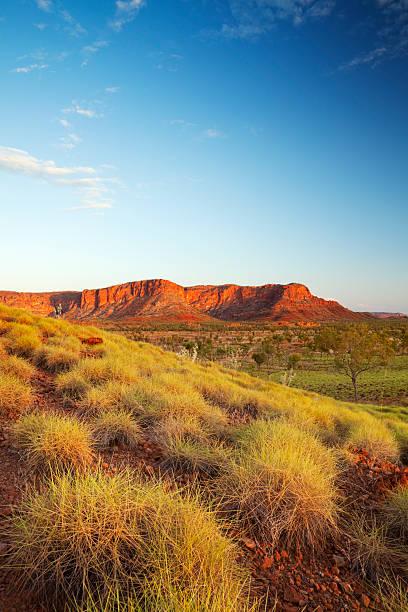 australischen landschaft im nationalpark purnululu, westaustralien bei sonnenuntergang - wüstenarten stock-fotos und bilder