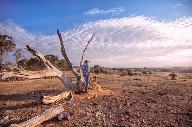 Australische Outback Landwirt Betrachtung – Foto