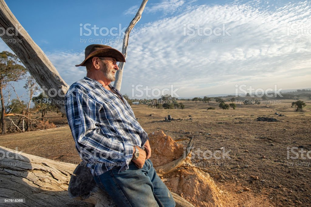 Australian Outback Farmer Overseeing Land stock photo