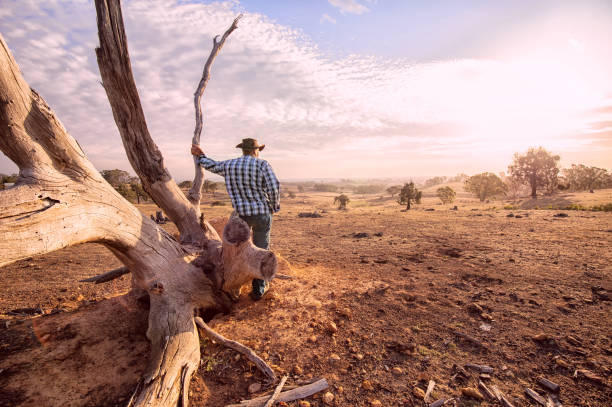 Australian Outback Farmer Senior farmer looking over the drought stricken land, during summer and fire season. outback stock pictures, royalty-free photos & images