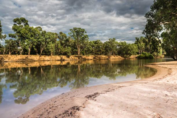 Australian Riverfront Landscape. Eucalyptus trees near  Murrumbidgee River in Hay, New South Wales, Australia stock photo