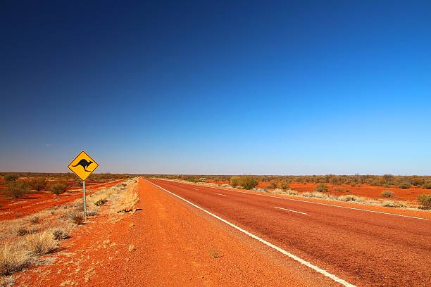 Australian road sign on the highway Kangaroos crossing. outback stock pictures, royalty-free photos & images