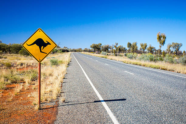 Australian Road Sign An iconic warning road sign for kangaroos near Uluru in Northern Territory, Australia outback stock pictures, royalty-free photos & images