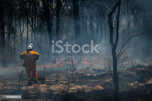 Australian Rural Fire Fighter observes fire damage