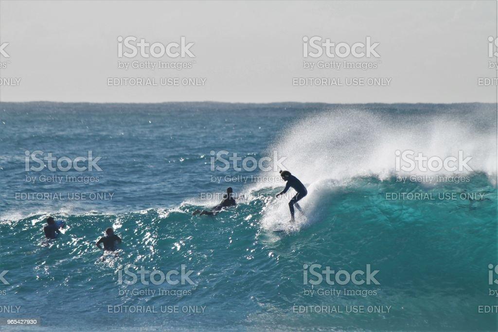 Australian surfer royalty-free stock photo