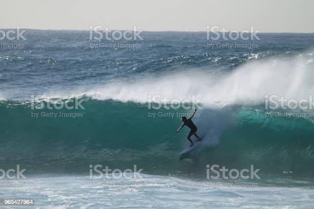 호주의 서퍼 건강한 생활방식에 대한 스톡 사진 및 기타 이미지