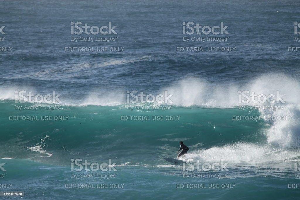 Surfeur australien - Photo de Activité de loisirs libre de droits