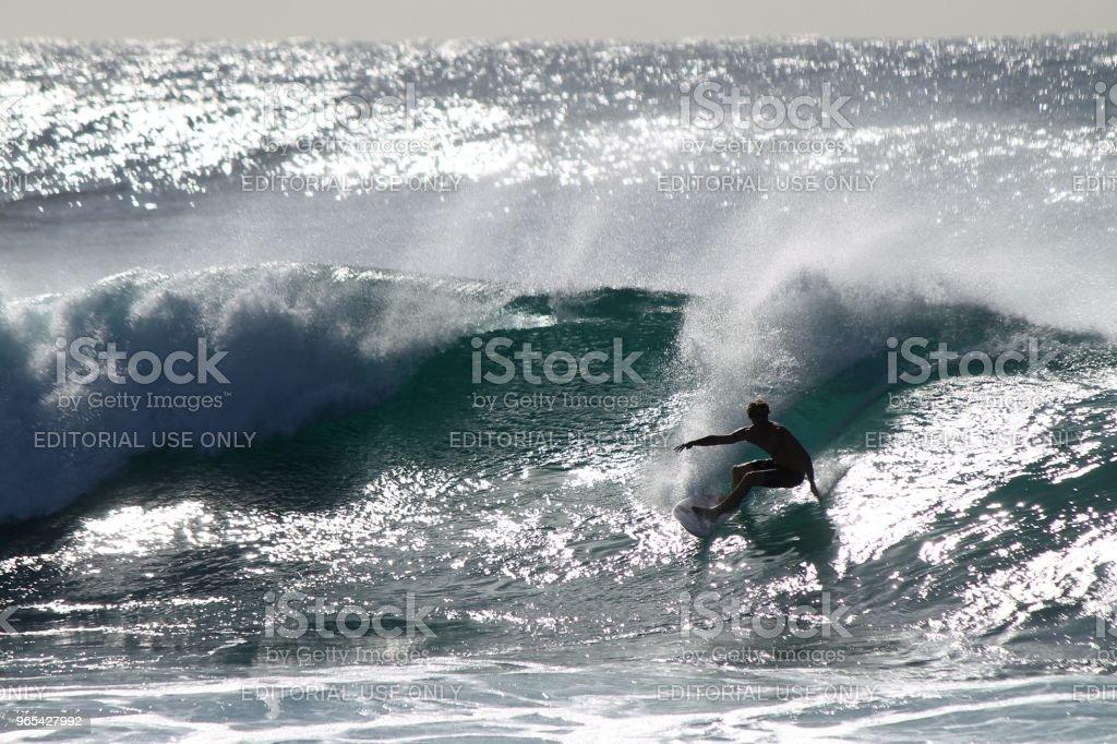 Australian surfer zbiór zdjęć royalty-free