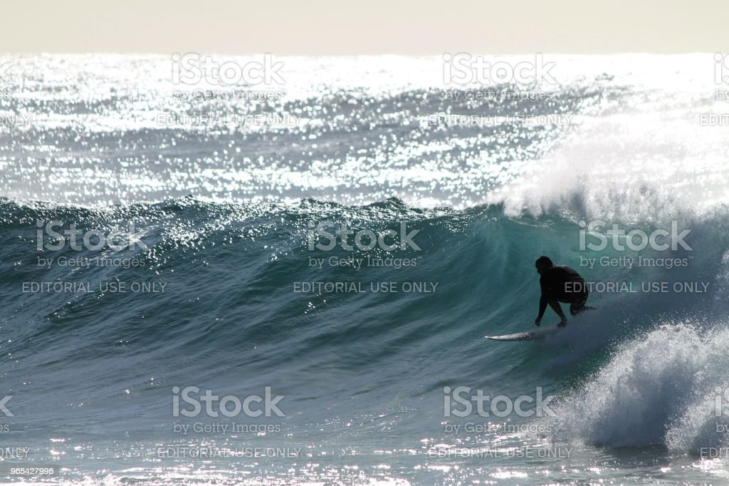 Australian surfer royalty-free stock photo