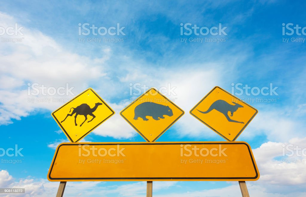 Australian Wildlife Roadsign A wildlife warning road sign in the Nullarbor Plain, Australia.  With room for your own text. Adventure Stock Photo