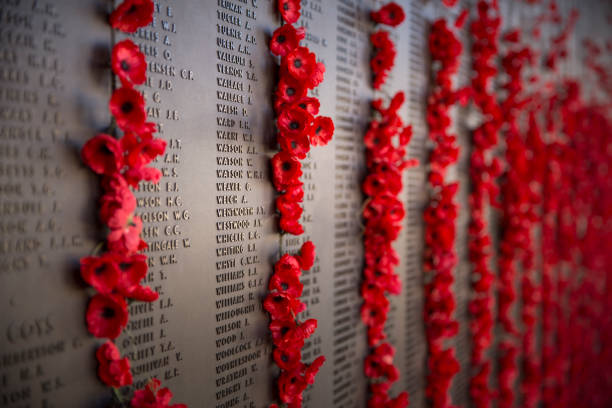 australians lost in war, remembered - war memorial stock pictures, royalty-free photos & images