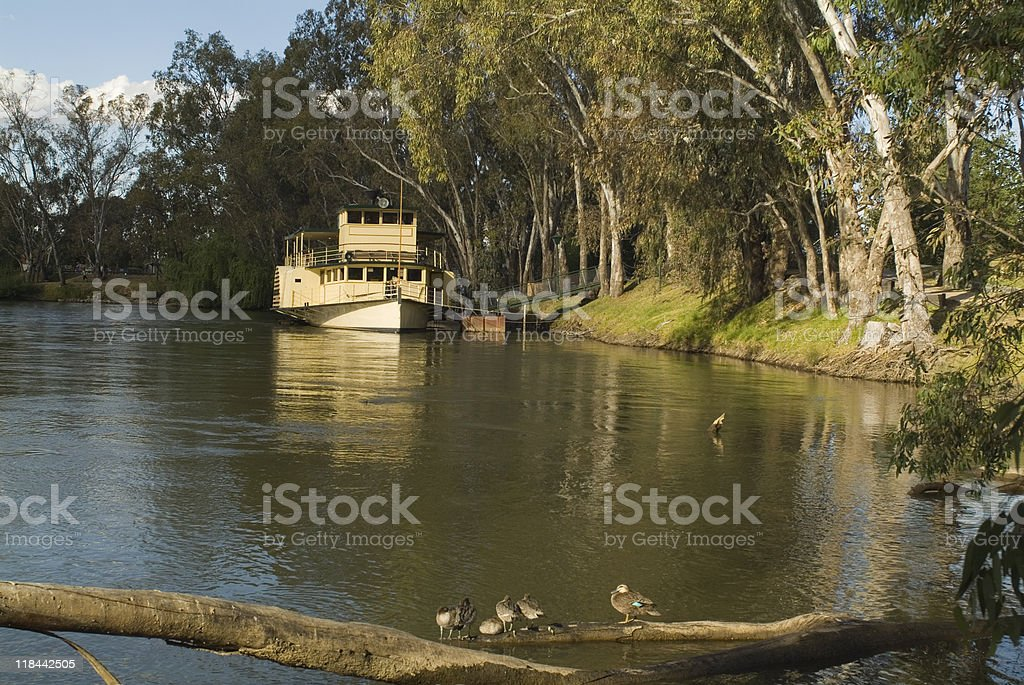 Australien, NSW,Murray River royalty-free stock photo