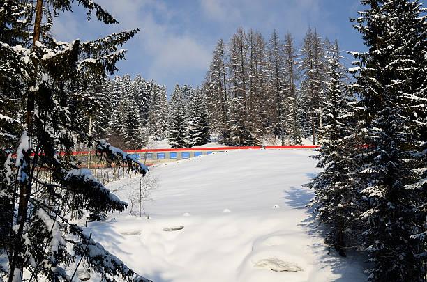 austria, railway in winter landscape - winter austria train bildbanksfoton och bilder