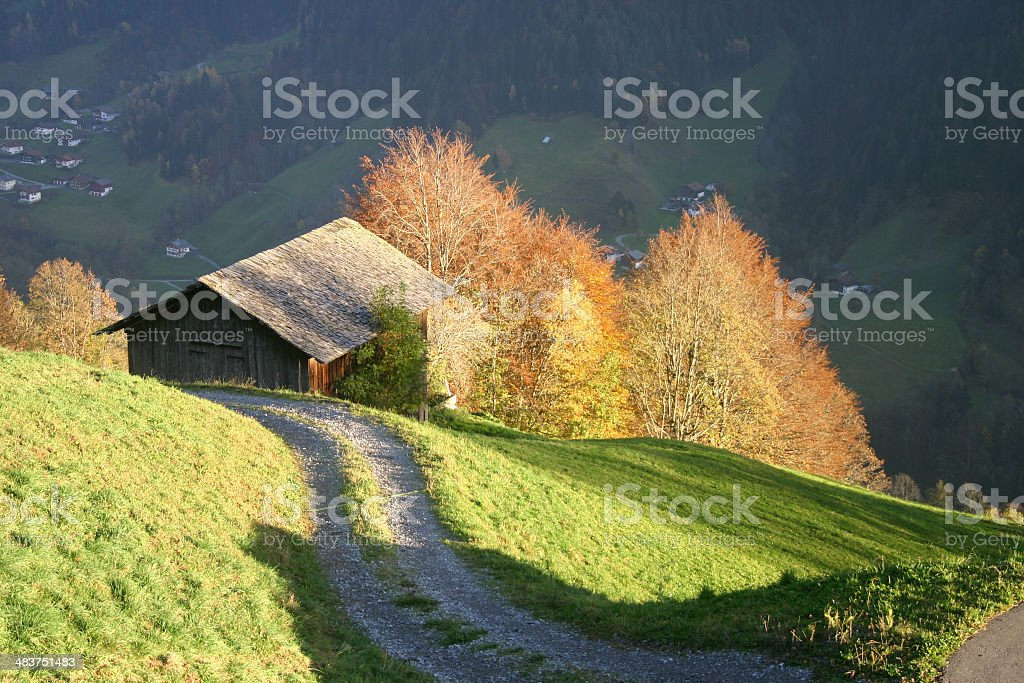 Austria - view over meadow royalty-free stock photo