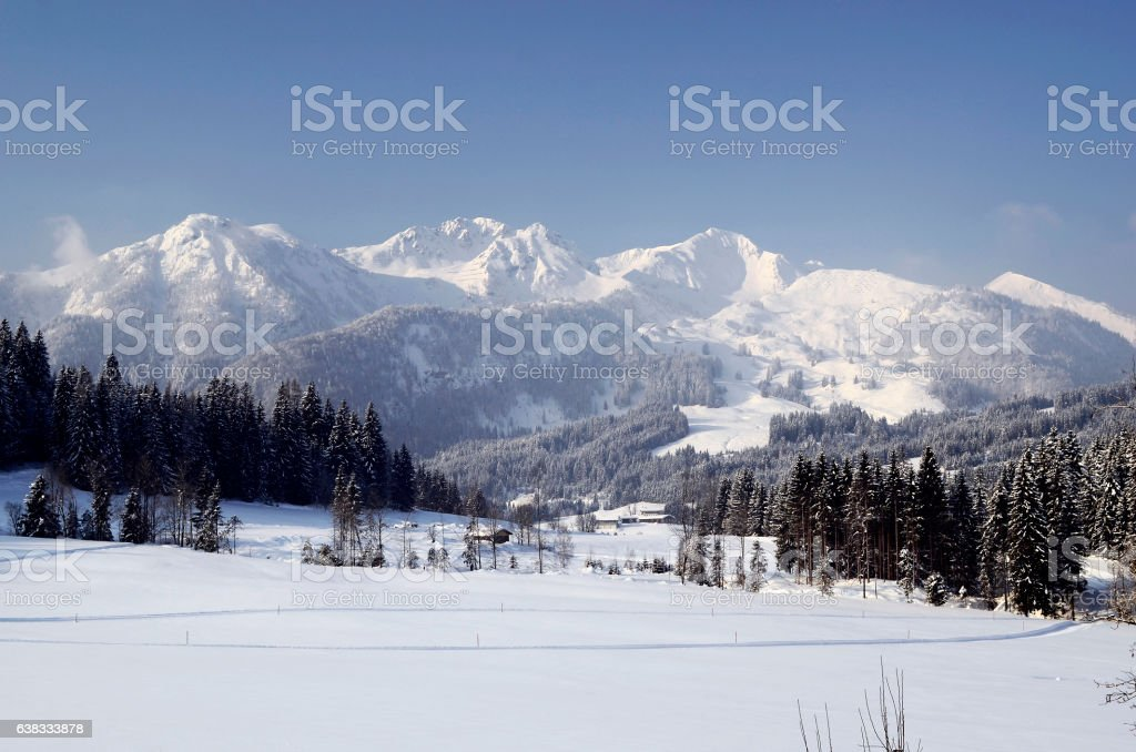 Austria, winter in Tyrol stock photo