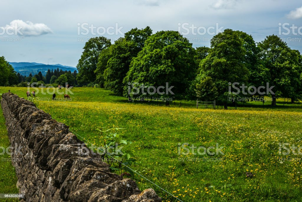 Authentic stone fence in the Jura Alps in Switzerland - 5