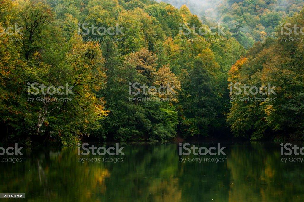 Autmn in Yedigoller National Park royalty-free stock photo