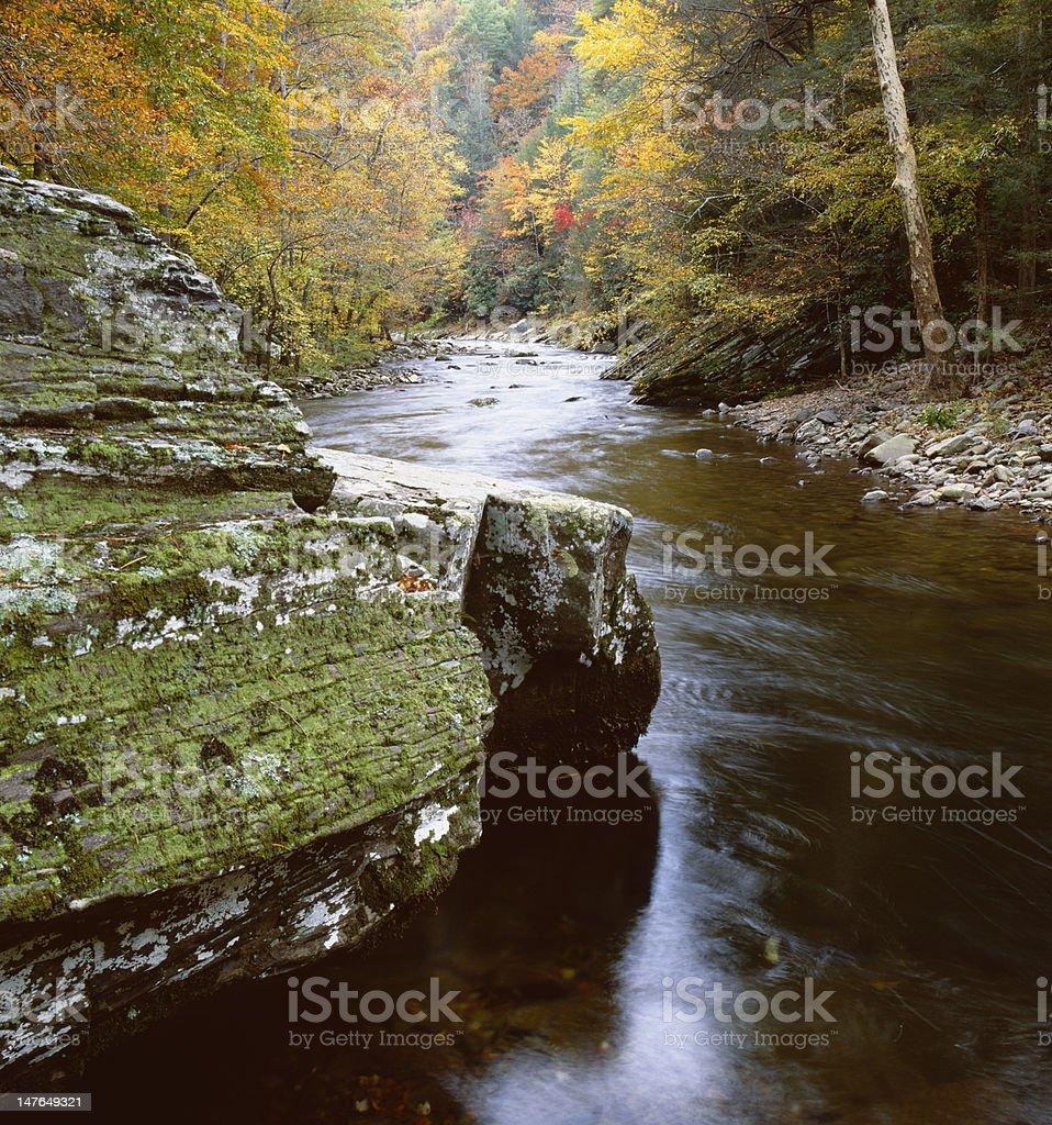 Autmun scene along the Litte River royalty-free stock photo