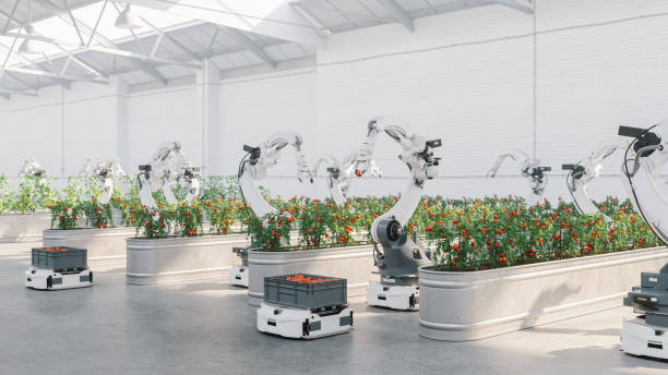 Automated Agriculture With Robots stock photo