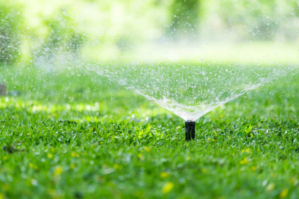 automatic garden lawn sprinkler - watering stock pictures, royalty-free photos & images