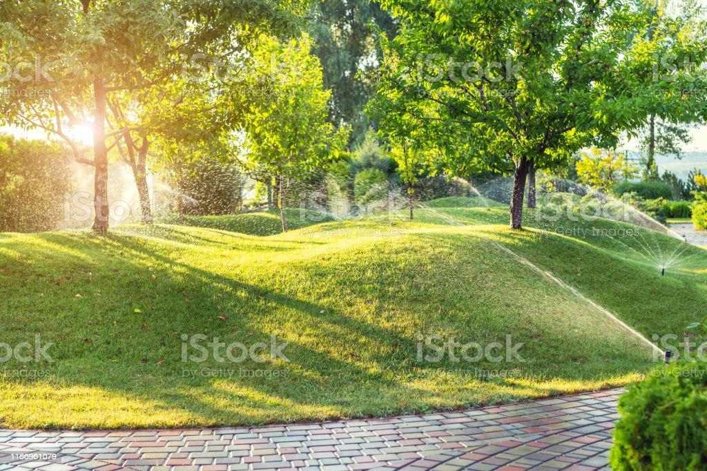 Automatisches Gartenbewässerungssystem mit verschiedenen Sprinklern unter Rasen installiert. Landschaftsgestaltung mit Rasenhügeln und Obstgarten bewässert mit intelligenten autonomen Sprayern bei Sonnenuntergang Abends - Lizenzfrei Anhöhe Stock-Foto