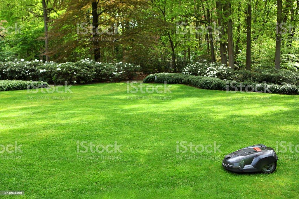 Automatique Tondeus'à gazon Tondre la pelouse herbe dans un jardin - Photo