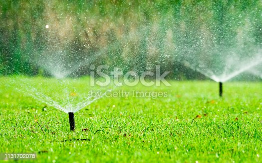 istock Automatic lawn sprinkler watering green grass. Sprinkler with automatic system. Garden irrigation system watering lawn. Water saving or water conservation from sprinkler system with adjustable head. 1131702078
