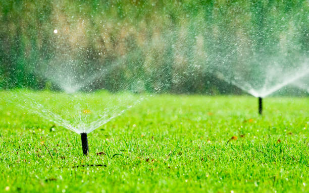 Automatic lawn sprinkler watering green grass. Sprinkler with automatic system. Garden irrigation system watering lawn. Water saving or water conservation from sprinkler system with adjustable head. Automatic lawn sprinkler watering green grass. Sprinkler with automatic system. Garden irrigation system watering lawn. Water saving or water conservation from sprinkler system with adjustable head. irrigation equipment stock pictures, royalty-free photos & images