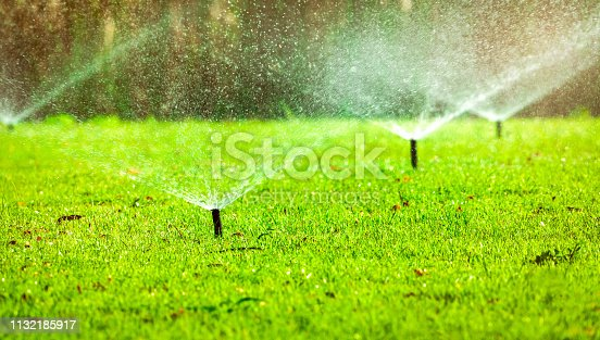 istock Automatic lawn sprinkler watering green grass. Sprinkler with automatic system. Garden irrigation system watering lawn. Water saving or water conservation from sprinkler system with adjustable head. 1132185917