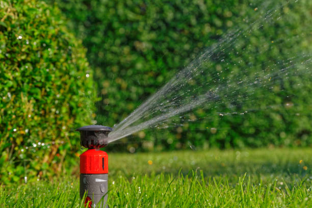 Automatic lawn sprinkler while watering stock photo