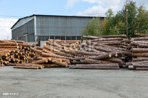 Automatic sorting logs diameter at the sawmill
