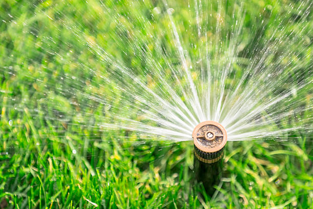 automatic sprinkler - watering stock pictures, royalty-free photos & images