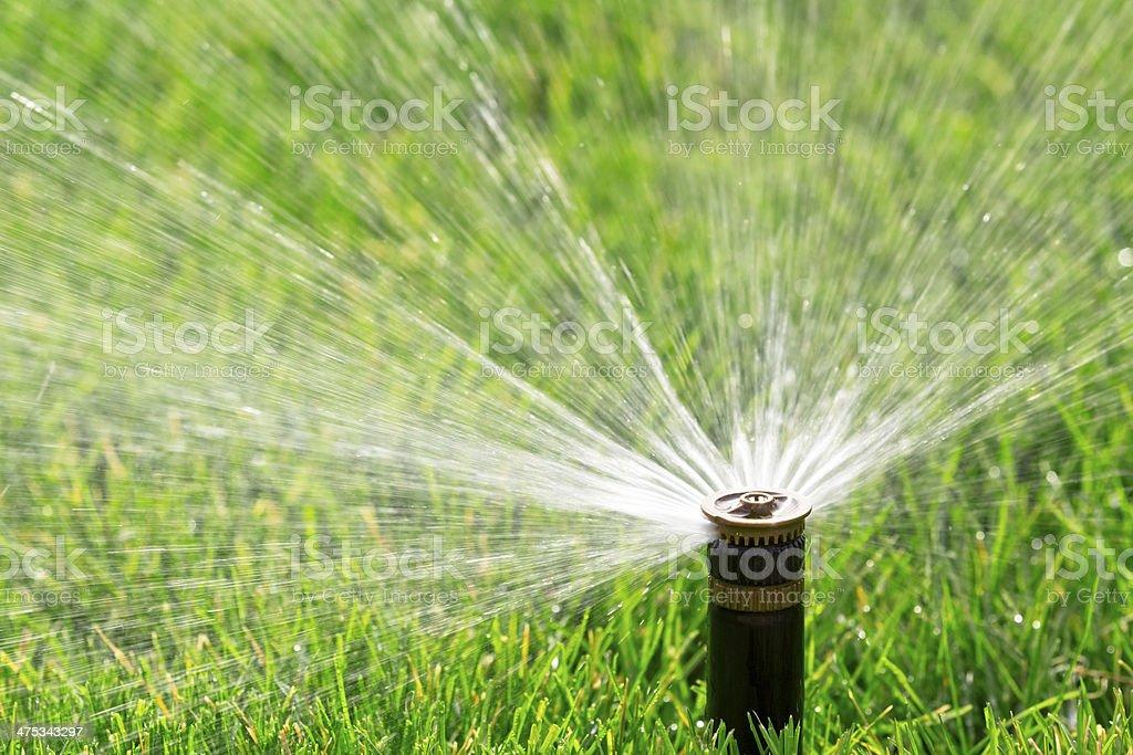 Automatic sprinkler automatic sprinkler watering fresh lawn Agricultural Sprinkler Stock Photo