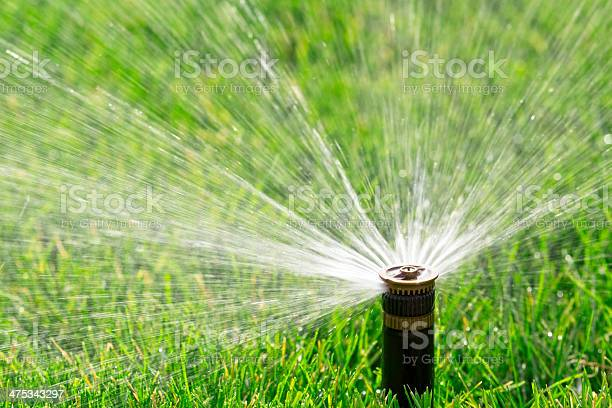 Automatic Sprinkler Stock Photo - Download Image Now
