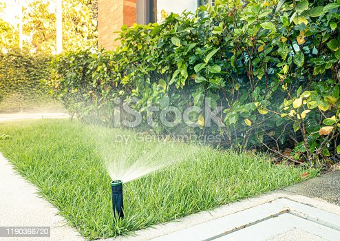 Automatic sprinkler system watering in the garden