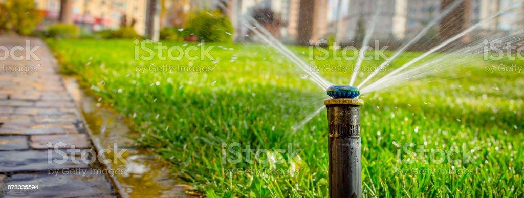 système d'arrosage automatique arrosage de la pelouse sur un fond d'herbe verte - Photo