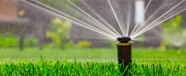 automatic sprinkler system watering the lawn on a background of green grass - garden hose stock pictures, royalty-free photos & images
