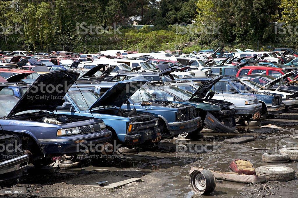 Automobile junkyard. stock photo