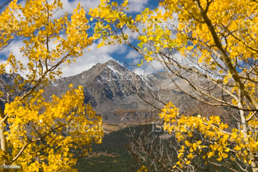 Autum Color on Independance  Pass Colorado royalty-free stock photo