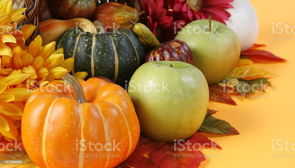 Autum Colors royalty-free stock photo
