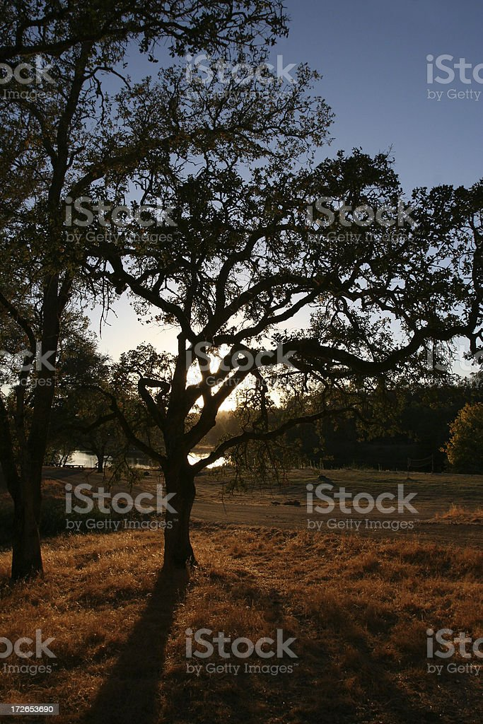 Autum Sunset royalty-free stock photo